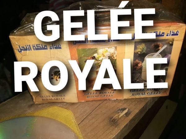 Image de GELÉE ROYALE  غذاء الملكة