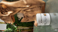 Image de Gommage Visage aux Figues de Barbarie 100ml