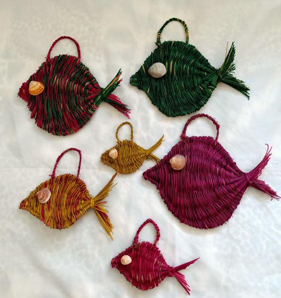 Image de Composition poissons halfa