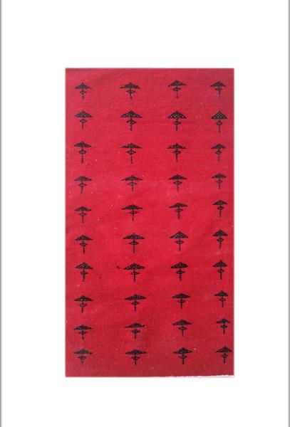 Image de Tapis berbère rouge T2